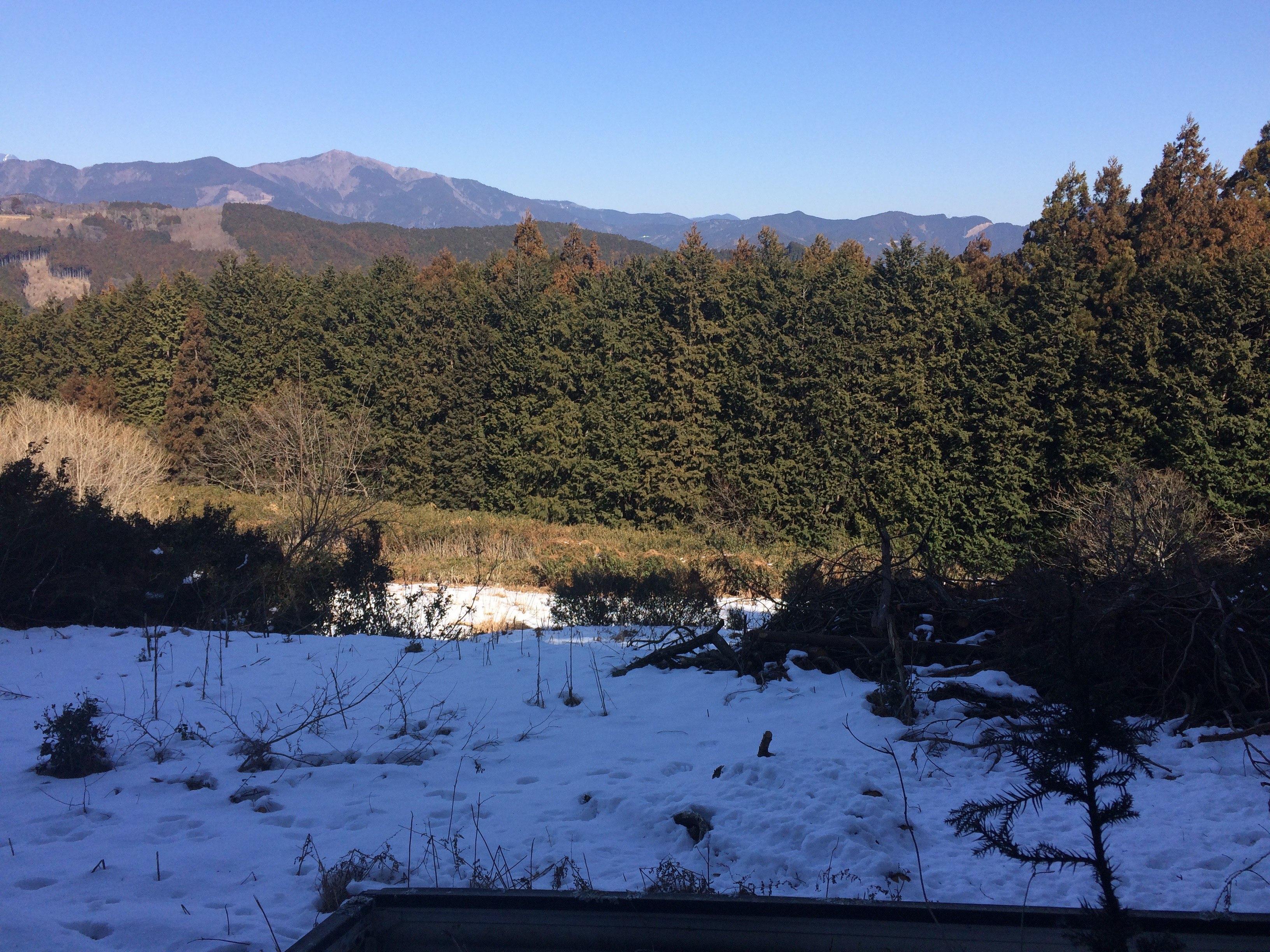 ずしゃだち圃場雪景色